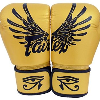 Fairtex-Muay-Thai-Boxing-Gloves-BGV1-Size-10-12-14-16-oz-Training-sparring-All-purpose-gloves-for-kick-boxing-MMA-K1-Falcon-14-oz-0